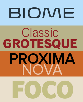 Top four fonts in 2012