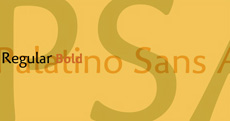 Palatino Sans Arabic